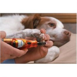 How To Trim Dog's Nails Quick With A Dremel