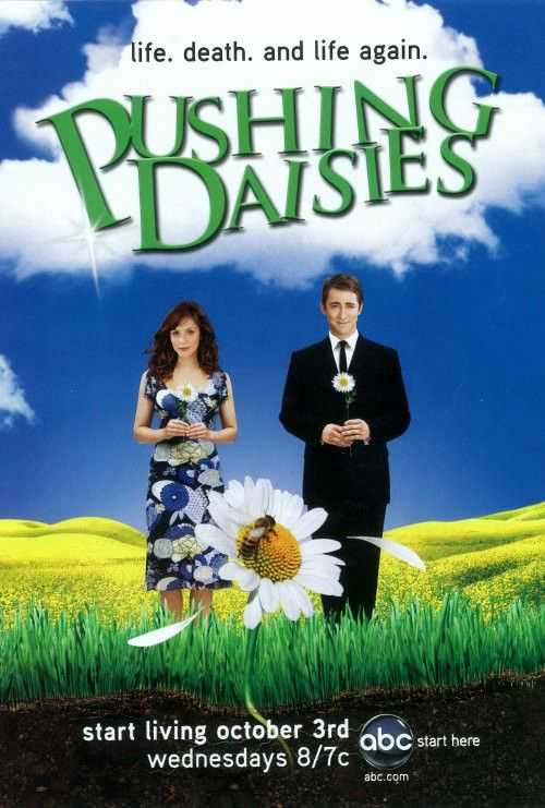 Pushing Daisies 27x40 TV Poster (2007)