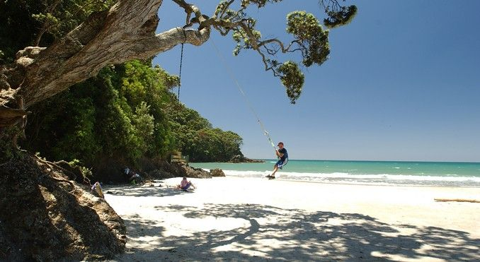 there is nothing quite like a rope swing at the beach.  Any beach is good, this one just happens to be at Waihi Beach.