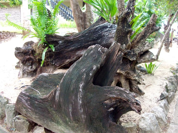 #Travel: Garden feature, #Sonaisali Island Resort, #Fiji.  In 1970, Fiji gained independence from Britain and in 1987 it was declared a republic.  Photo Credit: Dawne Rudman
