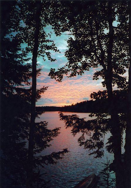 Sunrise near the forest