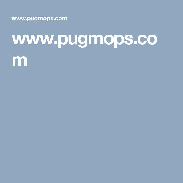 www.pugmops.com  Pug mops yavruları satılık