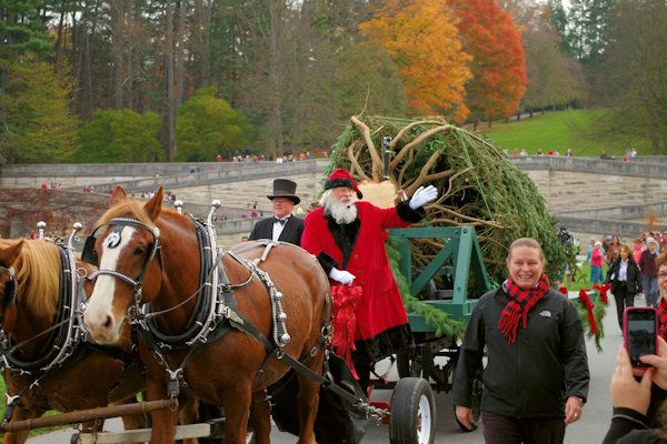 Christmas at Biltmore Photos & Guide. will be present for the 35 ft. tree arrival 11-4-15...love all of the related activities.