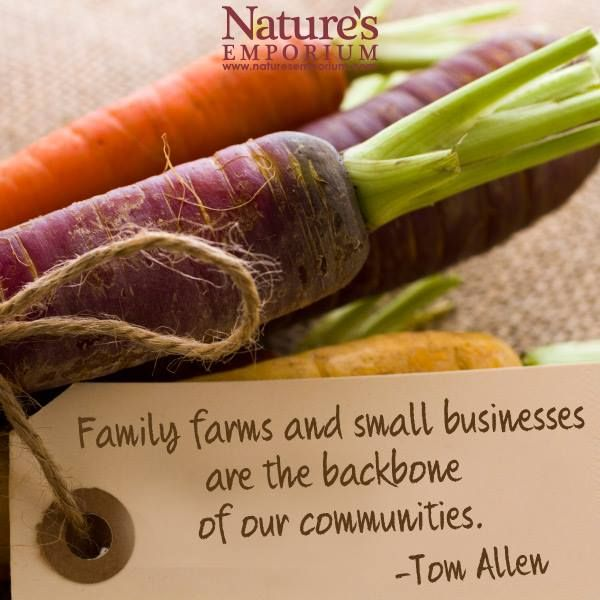 Family farms and small businesses are the backbone of our communities. -Tom Allen