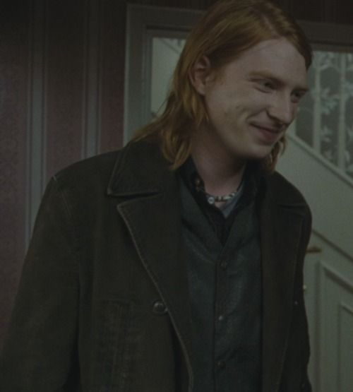 Bill Weasley-Harry Potter saga