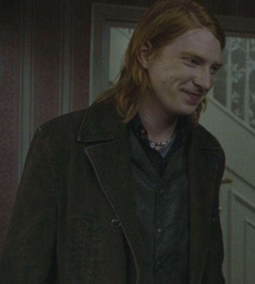 Bill Weasley-Harry Potter saga
