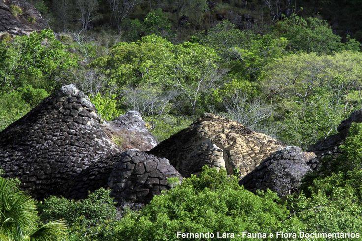 Parque Nacional de Sete Cidades / Piaui