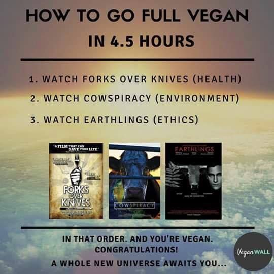 Imagini pentru How to become vegan in 4,5 hours