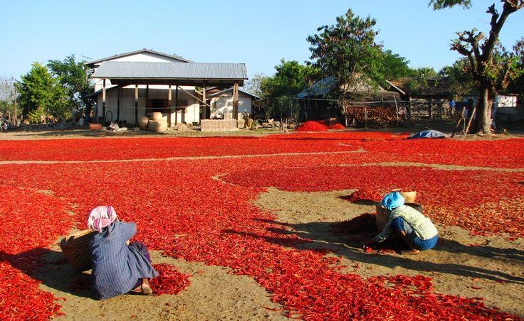 #Myanmar. Poznajecie?