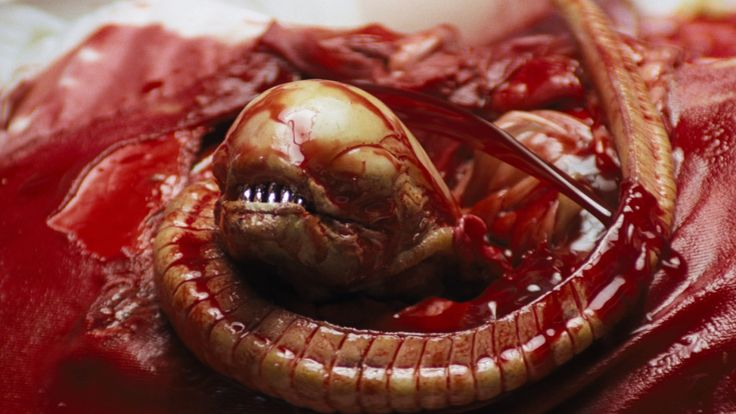 TIL that the cast of the 1979 science fiction horror film 'Alien' was never told about the chestburster scene in order to capture the authentic fear of the actors