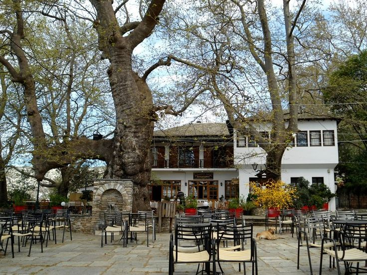 Πορταριά: Το χωριό στο Πήλιο που μοιάζει με ανθισμένο μπαλκόνι πάνω από το Βόλο! - Exfacto.gr  #πορταρια #πηλιο #βολος