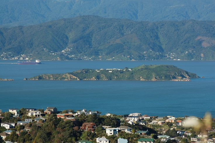 Matiu / Somes Island Reviews : Wellington places to visit