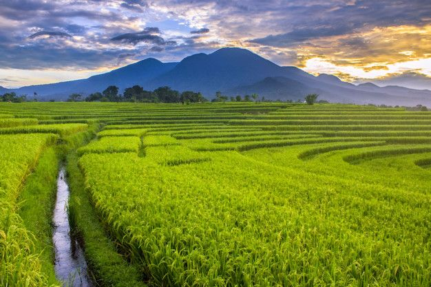 Mountain Range With Morning Scenic Photography Indonesia Photography Photography