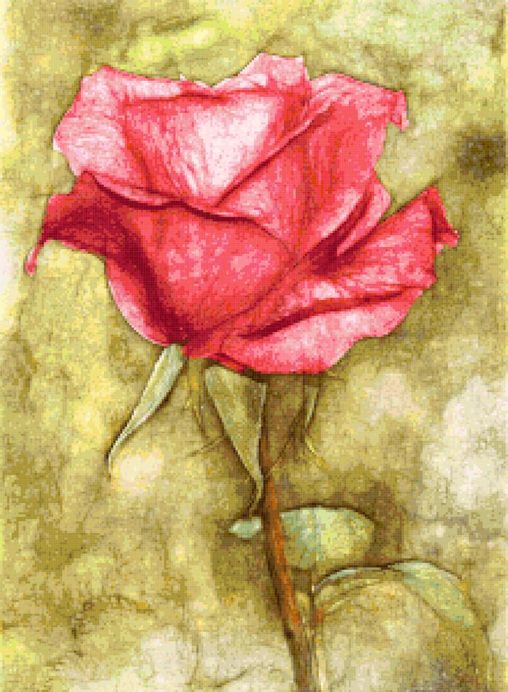 fantasy rose cross stitch image