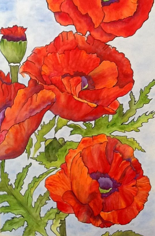 """Poppy Art - """"Poppies and More Poppies"""" - Painting by Lorraine Skala - Follow me on FB at Sunflower Studio - Frameable prints & notecards available"""