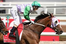 Prince of Penzance local horse does the impossible and wins the 2015 Melbourne Cup with lady jockey Michelle Payne aboard.