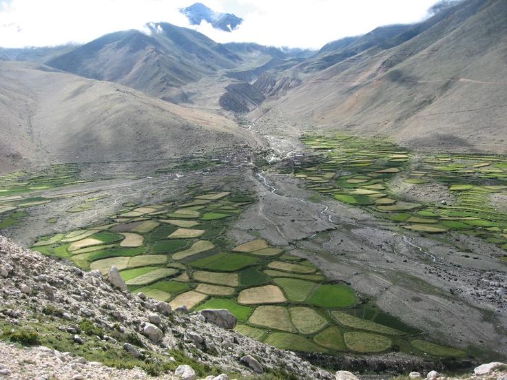 Arable valley in Tibet from the Friendship Highway, 2006 #greatwalker