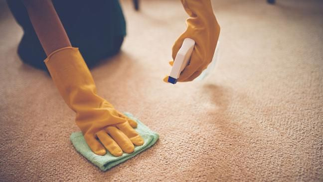 Always treat stains immediately on your carpet.