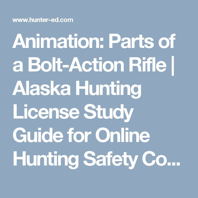 Animation: Parts of a Bolt-Action Rifle | Alaska Hunting License Study Guide for Online Hunting Safety Course