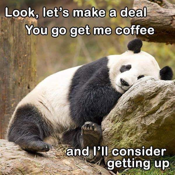 Coffee deal.