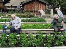 Afbeeldingsresultaat voor tuinieren ouderen
