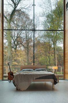 amazing windows + light