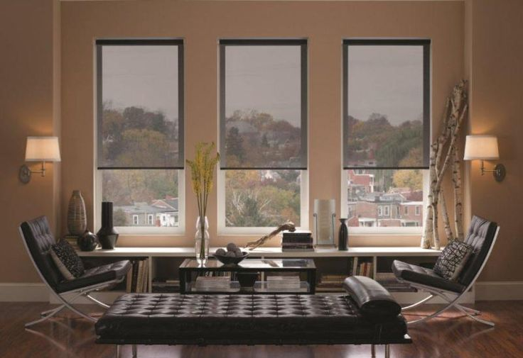 Filter out heat, glare and UV rays with a fantastic set of solar shades! Our wide product selection allows you to choose how much light you'll let in from 0% - 14%, all while looking great!
