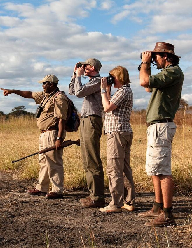 Spend anything from a morning to a couple of nights on foot, as a trained guide leads you on an interpretive wilderness journey, examining all the links, from the Siafu ants to the mighty bull elephant, in the circle of life. Timbuktu Travel.