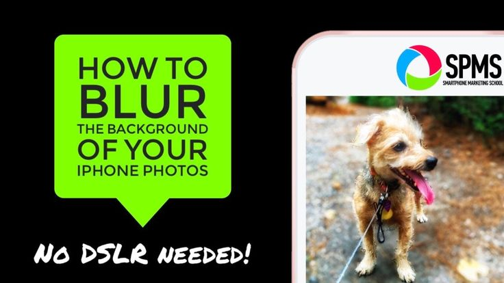 Do you envy the blurred background effect in DSLR photos? Blur photo backgrounds with IPhone and easy-to-use apps and get a great bokeh effect.