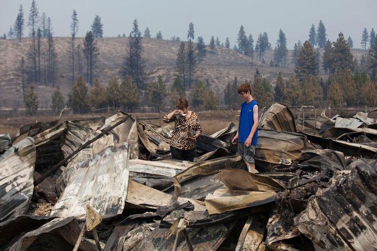 BBB teams ups with state agencies to help combat charity scams surrounding the Central Washington fires. Photo courtesy of NBC News. http://bbb.org/h/6rqMim Morris, Washington State, Reuters Editor, Joel Lafer, Carlton Complex, July 20, Reuters David Ryder, Complex Fire, Editor Choice