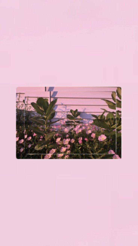 İphone Wallpapers> Pinterest : esina1 – – – #esin…