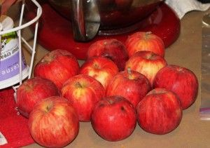 How to Make Your Own Pectin:  http://www.shtfpreparedness.com/how-to-make-your-own-pectin/#.UXSE9ErQiRN