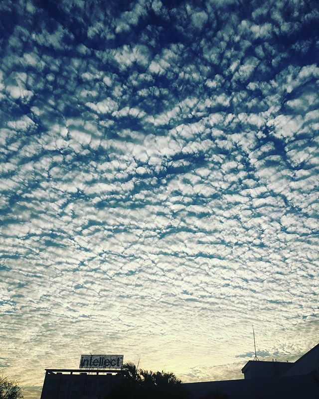 When the sky is Patterned.... Altocumulus clouds.... #sky #evenings #altocumulus #clouds #office #patterns #skysreflection #happyme #chennai #iphone6sphotography #instalike #instadaily When the sky is Patterned.... Altocumulus clouds.... #sky #evenings #altocumulus #clouds #office #patterns #skysreflection #happyme #chennai #iphone6sphotography #instalike #instadaily