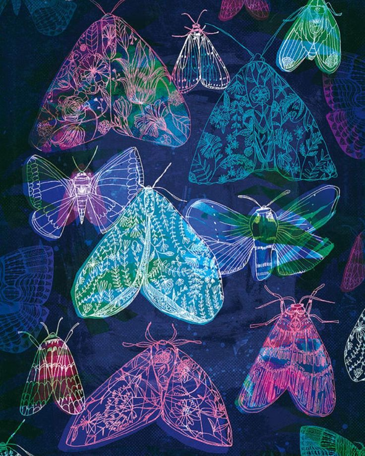 'Floral Night Moths' art print available in easy to frame sizes. I love the colours in this print. link in bio.