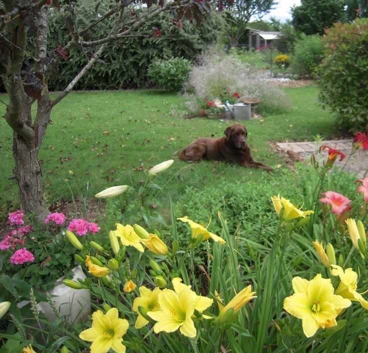 les 112 meilleures images du tableau les quatre saisons au jardin sur pinterest jardins le. Black Bedroom Furniture Sets. Home Design Ideas
