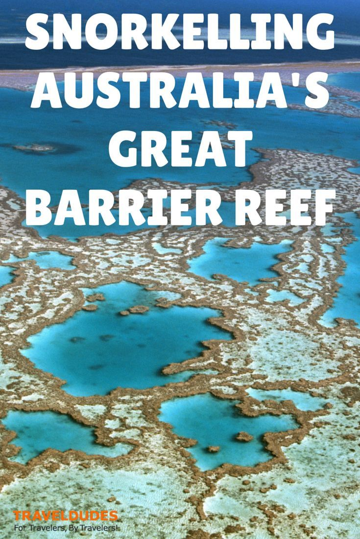 an overview of the great barrier reef in queensland The queensland government is committed to protecting the great barrier reef (gbr) the queensland government demonstrated this commitment through its strategic assessment of the gbr coastal zone in accordance with the environment protection and.