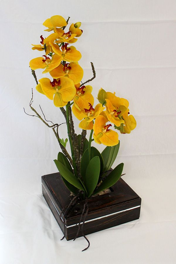 Orquídea Permanente Phaleanopsis Amarela - Vaso de Madeira