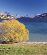 Frankton Arm, Lake Wakatipu