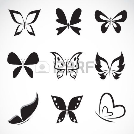 Vector group of butterfly on white background