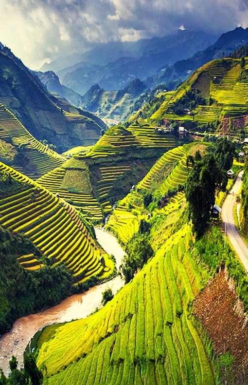 COCOON travel inspiration bycocoon.com | explore | places in the world | dreams | wanderlust | travelling | Dutch Designer Brand COCOON | Mu Cang Chai , Vietnam