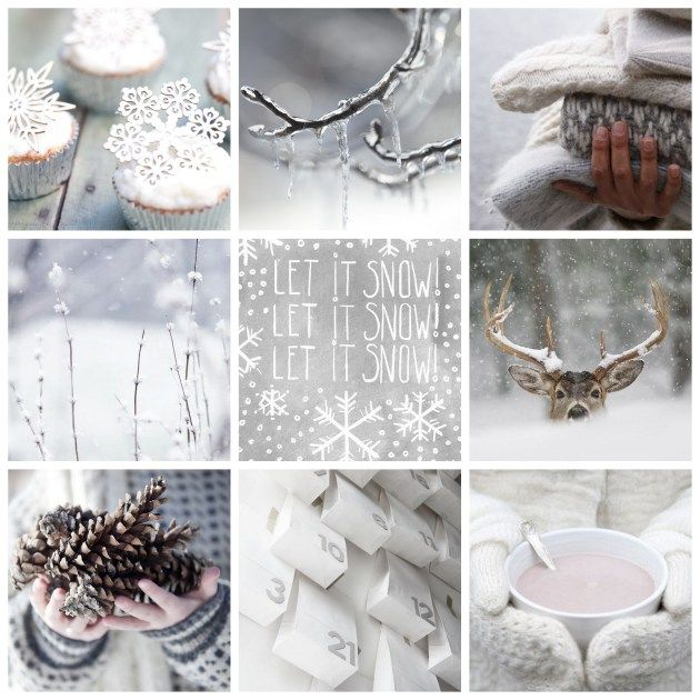 winter white - by Myra Madeleine