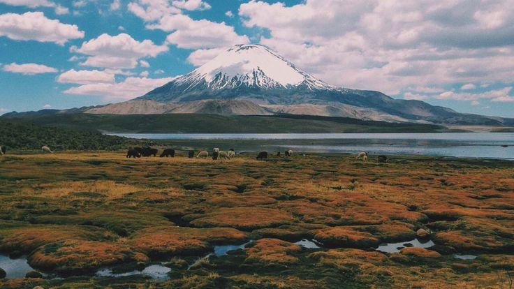 Lago Chungará, Chile