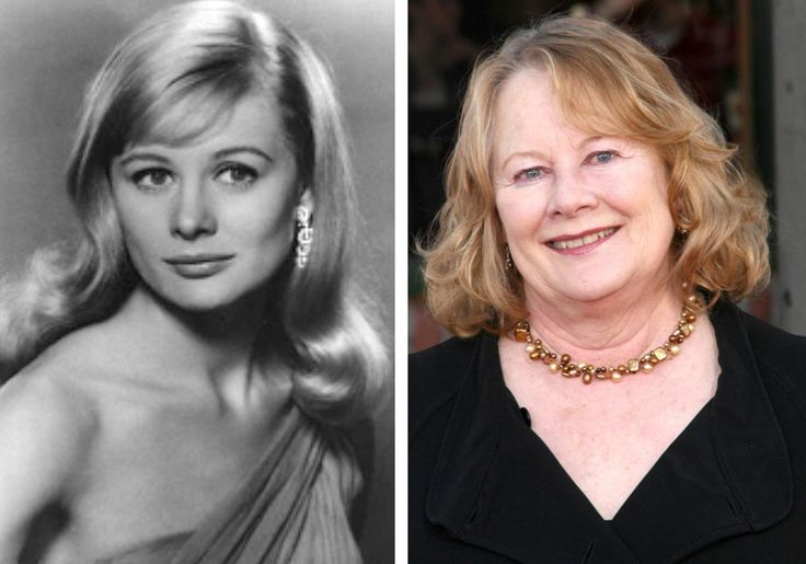 Known for her beauty and award winning acting, Shirley Knight is an actress of film, television, and stage. Her best known roles include The Dark at the Top of the Stairs, Sweet Bird of Youth, and Dutchman. She still acts today, and has been in both comedic and dramatic films.