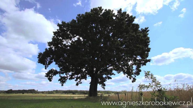 Medytacja czakr Agnieszki Robakiewicz www.jogalifestyle.com…