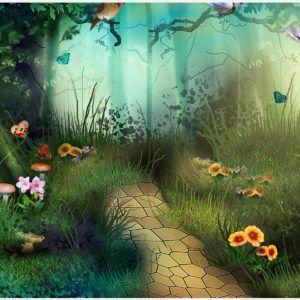 Bird Of Paradise Flower HD Wallpaper | bird of paradise flower wallpaper, bird of paradise hd wallpaper
