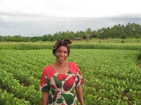 Growth Green Agriculture Plc is a UK based agricultural investments company specialising in emerging markets offering lucrative opportunities to invest in Ghana. GGAgriculture acts as consultant on green and socially responsible investments to the private and institutional investor community in Europe. http://ggagriculture.com