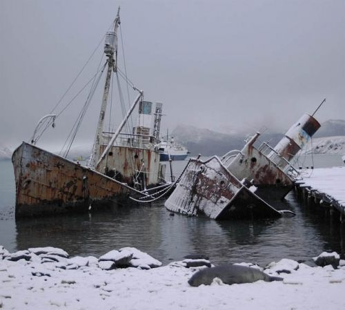 17 Best Images About Wrecks, Derelicts And Ghost Ships On