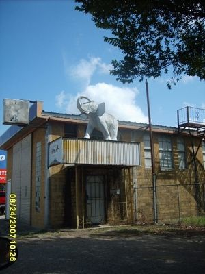 Taylor, TX: Elephant on building in Taylor, Texas has been there since the mid 1950's