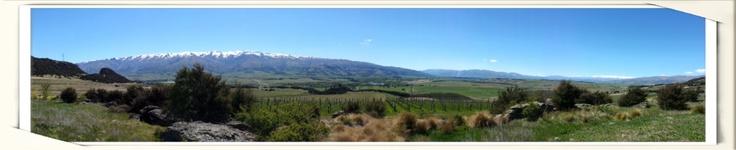 Bendigo panorama yesterday. Beautiful spring day in #CentralOtago pic.twitter.com/FjNitMFg