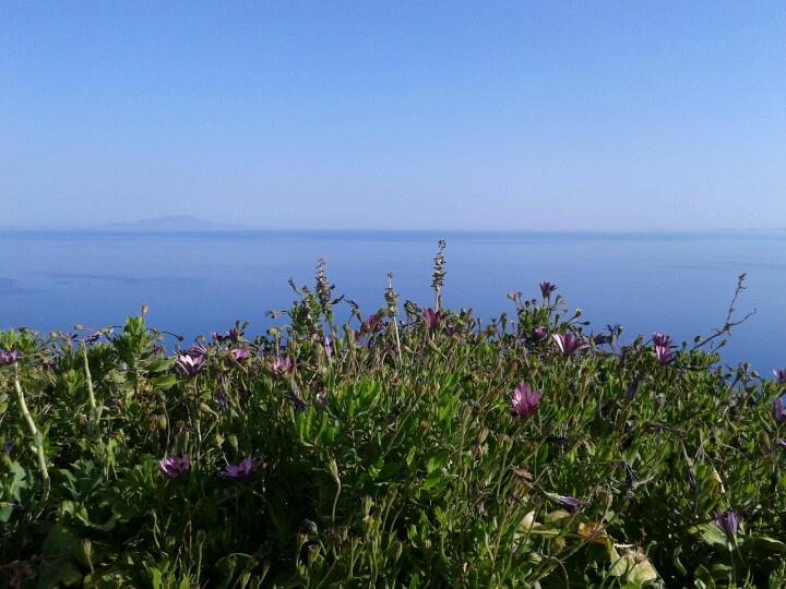 Beautiful day @ Anemomilos!